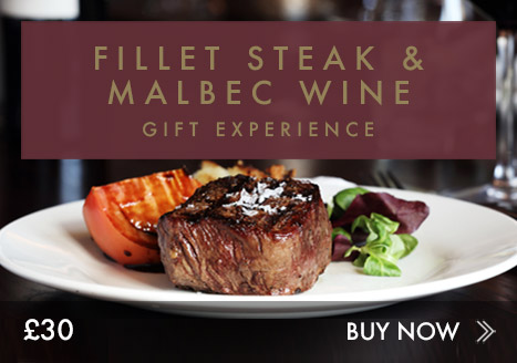 Fillet steak & malbec wine experience
