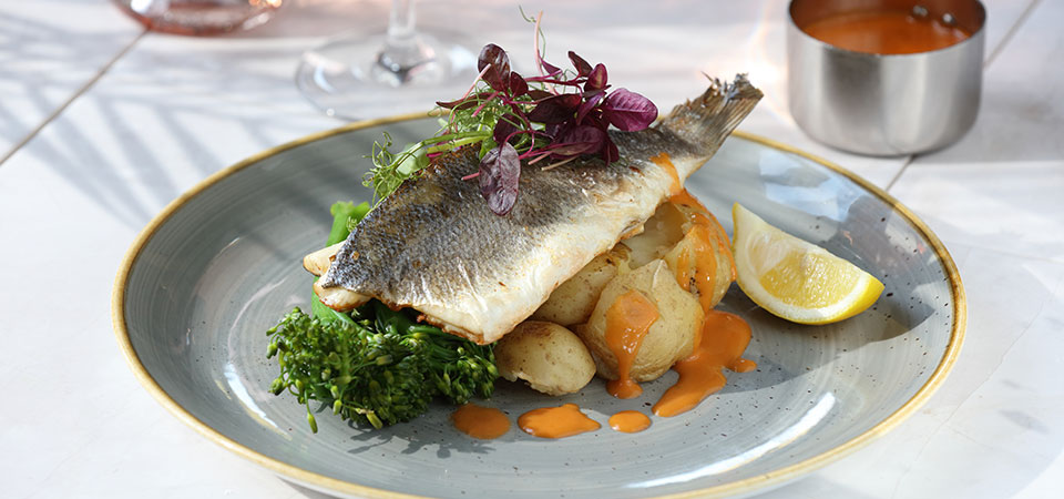 grilled-sea-bass-01.jpg
